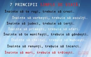 7principii