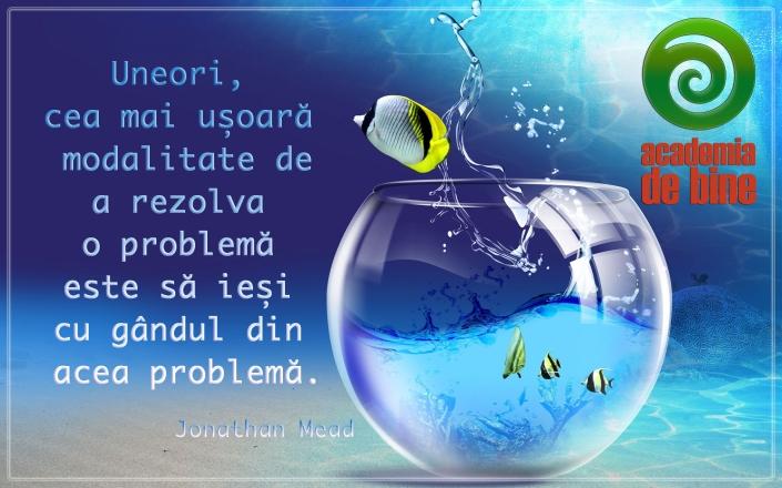 rezolvare_problema