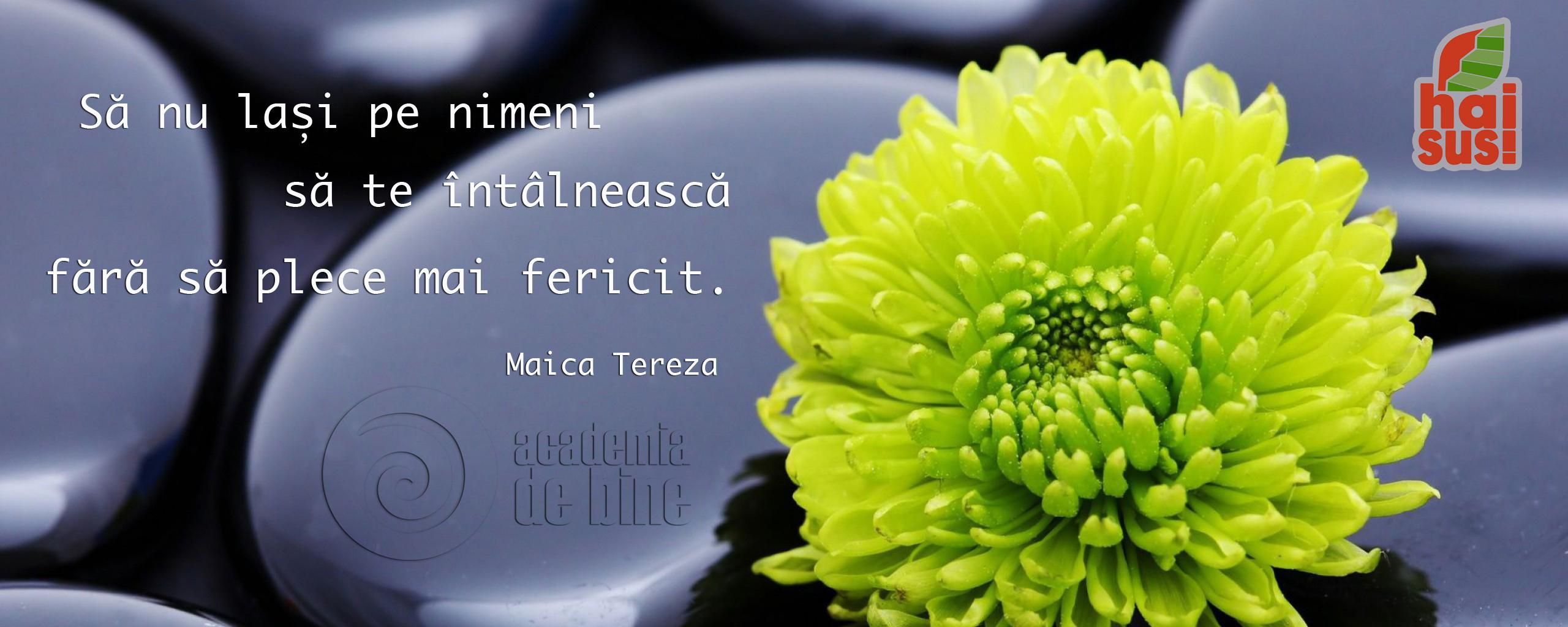 citate maica tereza maica tereza citate motivationale « DrStoica / da te n blogul meu  citate maica tereza
